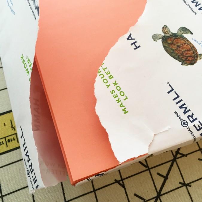 salmon copy paper