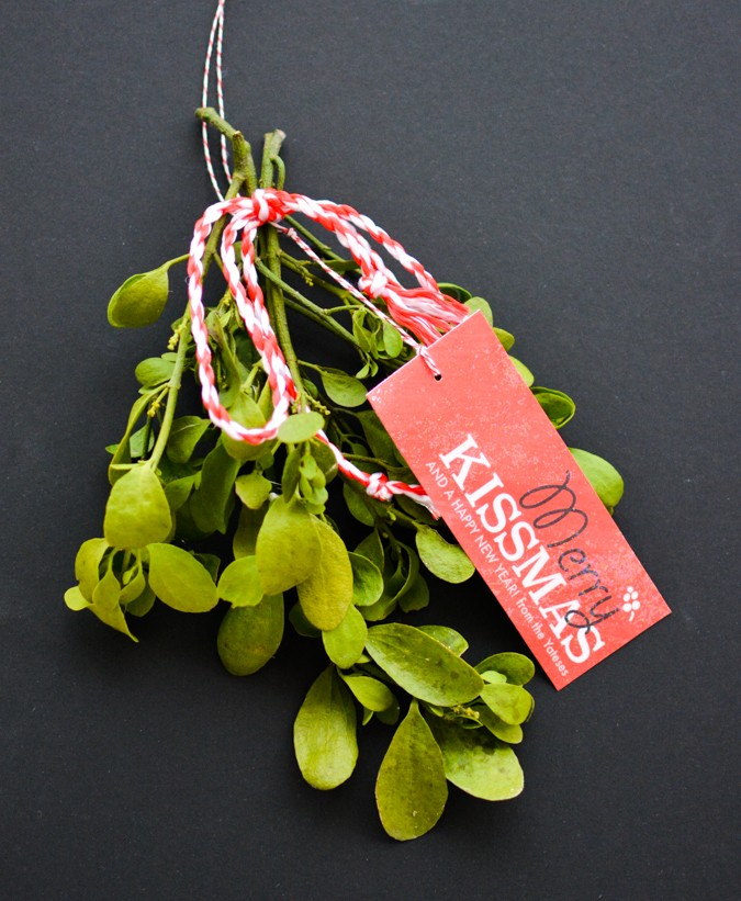 Merry Kissmas! Free Mistletoe Gift Tag Printable